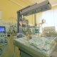 Infants in a Clinical Facility for Newborn Toddlers - VideoHive Item for Sale