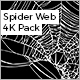 Spider Web Pack - VideoHive Item for Sale