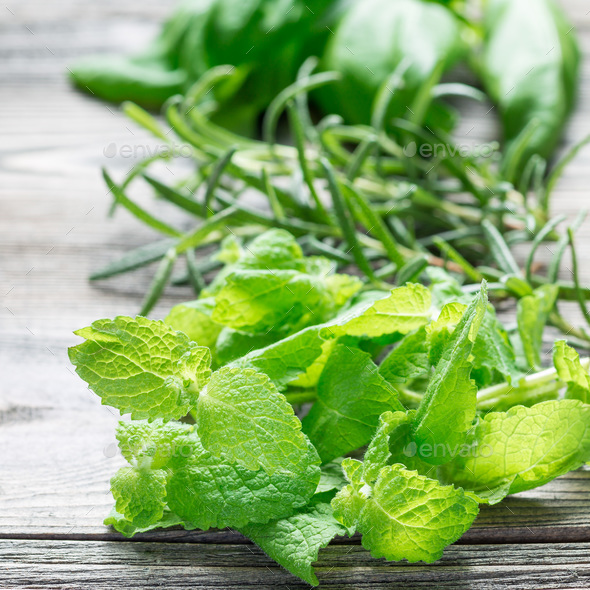 Basil, mint and rosemary. Fresh green herbs laying on wooden bac - Stock Photo - Images