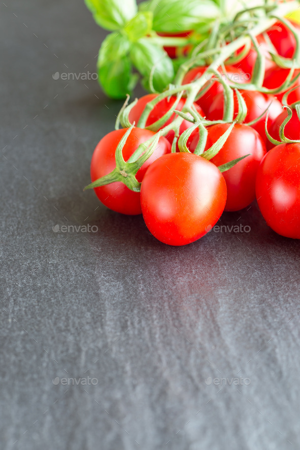 Cherry tomatoes with basil leaves on dark slate background, vert - Stock Photo - Images