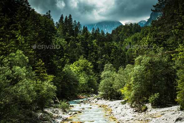 Clear water in Alpine river, Slovenia Triglav Park - Stock Photo - Images