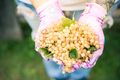 Female hands holding fresh white currant fruits in garden - PhotoDune Item for Sale
