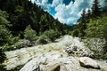 Mountains river flowing trough forest in Alps - PhotoDune Item for Sale