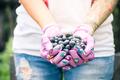 Farmer or gardener woman holding blueberries in hands - PhotoDune Item for Sale