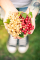 Young female holding freshly picked redcurrant and white fruits - PhotoDune Item for Sale
