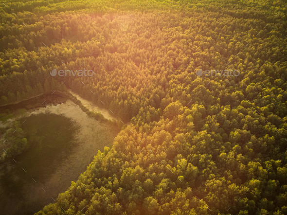 Sunrise over forest in autumn, aerial drone view - Stock Photo - Images