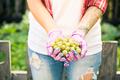 Woman gardener holding gooseberry in hands - PhotoDune Item for Sale