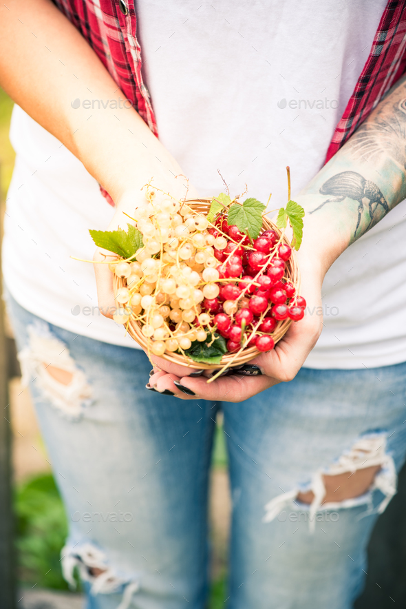 Young female holding freshly picked homegrown fruits - Stock Photo - Images