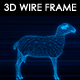 Sheep 3D Wire Frame - VideoHive Item for Sale