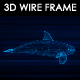 Killer Whale 3D Wire Frame - VideoHive Item for Sale