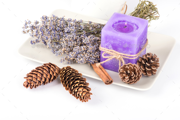 Dry lavender - Stock Photo - Images