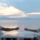 Couple Celebrating Drinking White Wine at Sunset - VideoHive Item for Sale