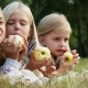 Values of Life - Childhood Friendship. Three Girls Eating Apples in the Park - VideoHive Item for Sale
