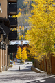 Street with aspens in Vail, Colorado, USA. - PhotoDune Item for Sale