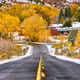 First snow and autumn trees along wet highway - PhotoDune Item for Sale