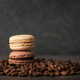 French macaroons on coffee beans - PhotoDune Item for Sale