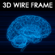 Human Brain 3D Wire Frame - VideoHive Item for Sale
