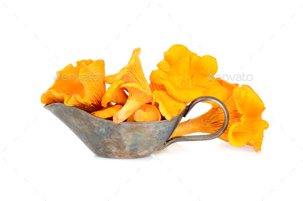 Yellow chanterelles mushrooms - Stock Photo - Images