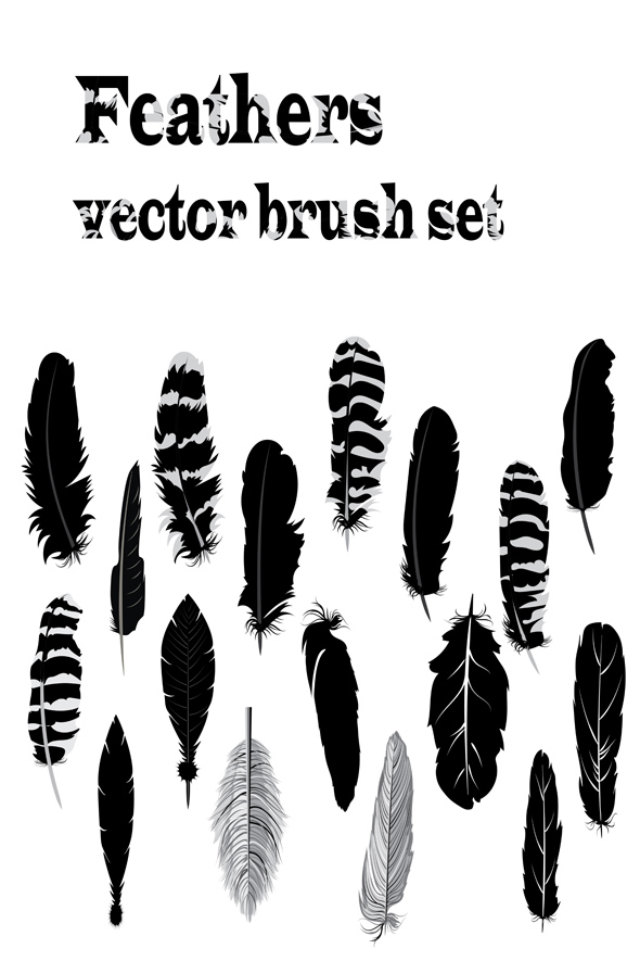 Feathers brush set - Brushes Illustrator