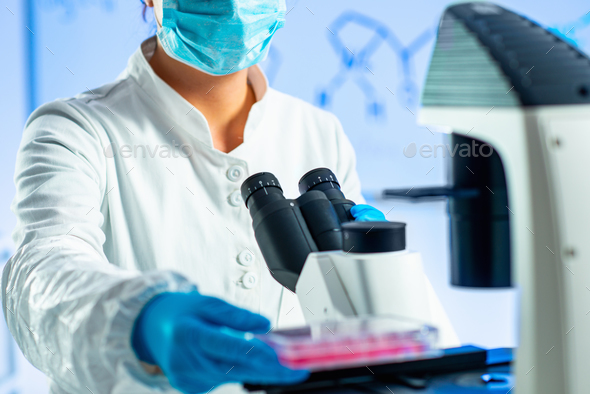 Biology laboratory, scientist working with cell culture - Stock Photo - Images