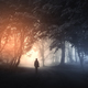 Man in surreal forest with fog and mysterious light on Halloween - PhotoDune Item for Sale