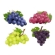 Realistic Grapes. Vector Set of Various Grape