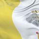 Vatican City Flag Waving