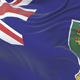 Flag of the British Virgin Islands - VideoHive Item for Sale