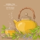 Sage Tea Illustration - GraphicRiver Item for Sale
