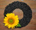 Yellow sunflower and sunflower seeds on wooden background. Top v - PhotoDune Item for Sale