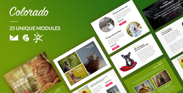 Colorado Email-Template + Online Builder (Newsletters) Preview 20Colorado 20Email Template