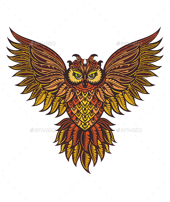 Owl Bird Illustration - Animals Characters