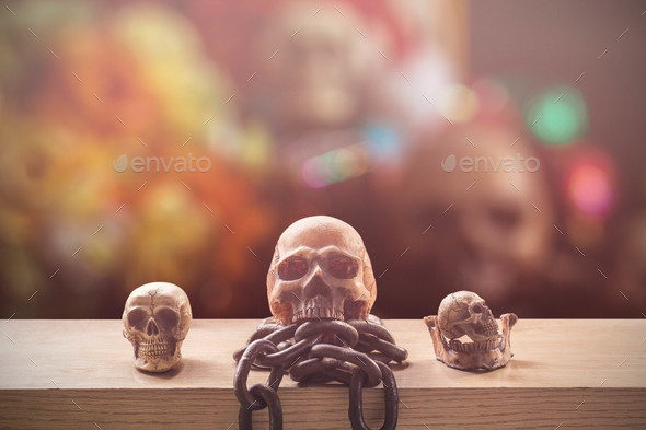 Skulls with a colorful background - Stock Photo - Images
