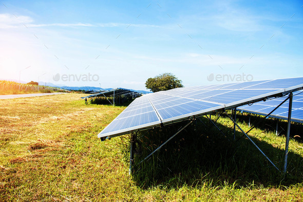 Solar panels on the lawn - Stock Photo - Images