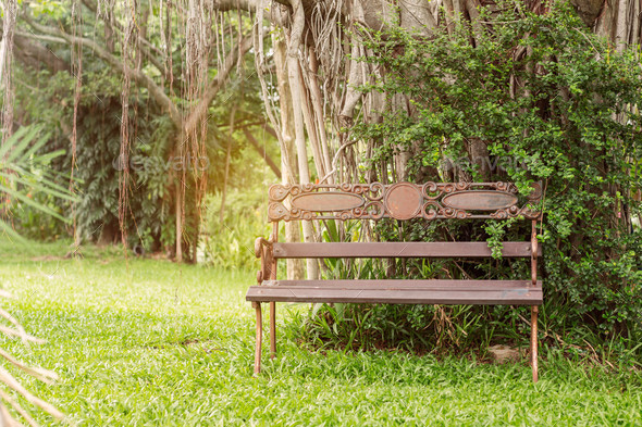 Old chairs in the park - Stock Photo - Images