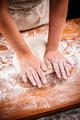 Woman's hands knead dough - PhotoDune Item for Sale