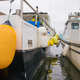 Fishing boats with buoys back view - PhotoDune Item for Sale