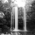 Misol Ha Waterfall Palenque Black and White - PhotoDune Item for Sale