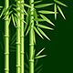 Realistic Detailed Bamboo Background Card