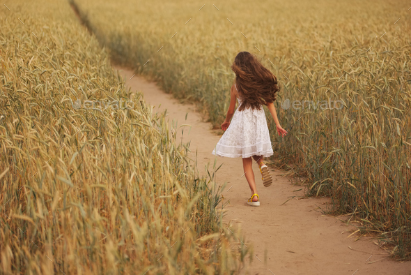 young girl in the yellow field - Stock Photo - Images