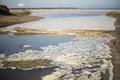Water pollution foam - PhotoDune Item for Sale