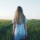 Back Look of the Girl Walking in a Green Field of Young Wheat - VideoHive Item for Sale