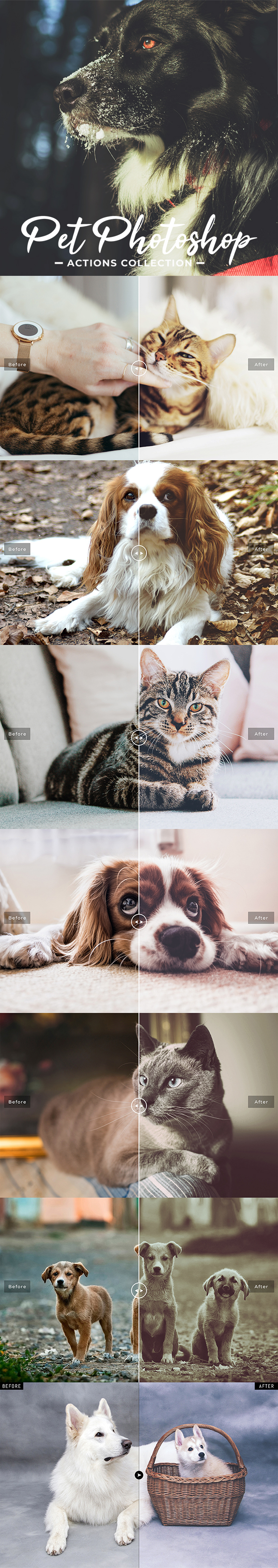 Pet Photoshop Actions Collection