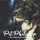 Pet Photoshop Actions Collection - GraphicRiver Item for Sale
