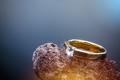 Golden wedding ring - PhotoDune Item for Sale
