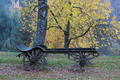 Old farm carriage under an autumn trees - PhotoDune Item for Sale