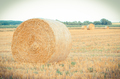Vintage photo, Round bales of hay on field - PhotoDune Item for Sale