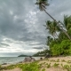 Storm Clouds Over Palm Trees on Taling Ngam Beach in Samui Island, Thailand - VideoHive Item for Sale