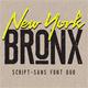 Newyork Bronx sans-script font duo - GraphicRiver Item for Sale