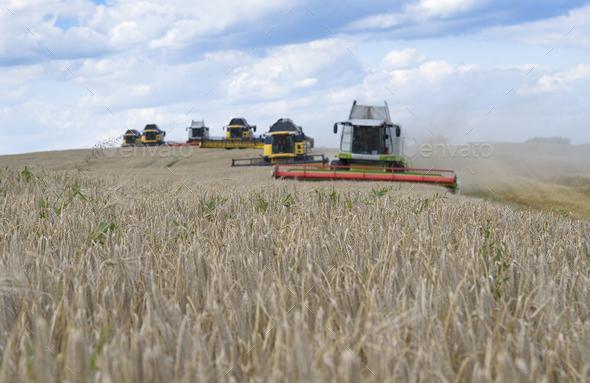 harvester machine - Stock Photo - Images